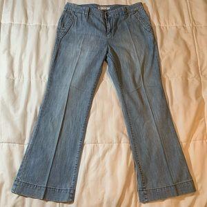 Tommy Hilfiger Blue Jeans Size 14 Petite